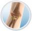 Elbow Fractue